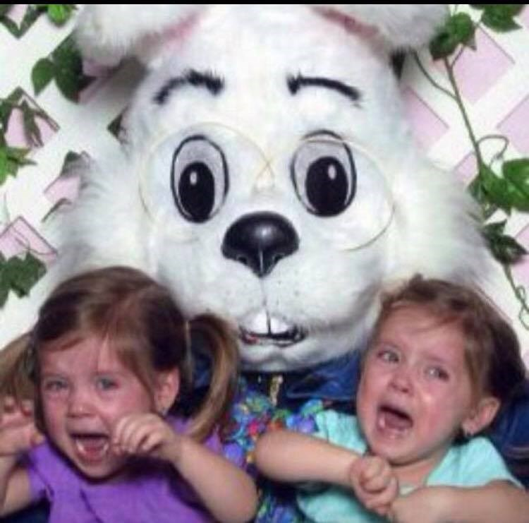 मैडिसन and Mackenzie McNeil were terrified of the Easter Bunny between the ages of two and six, according to their mom, Christine.
