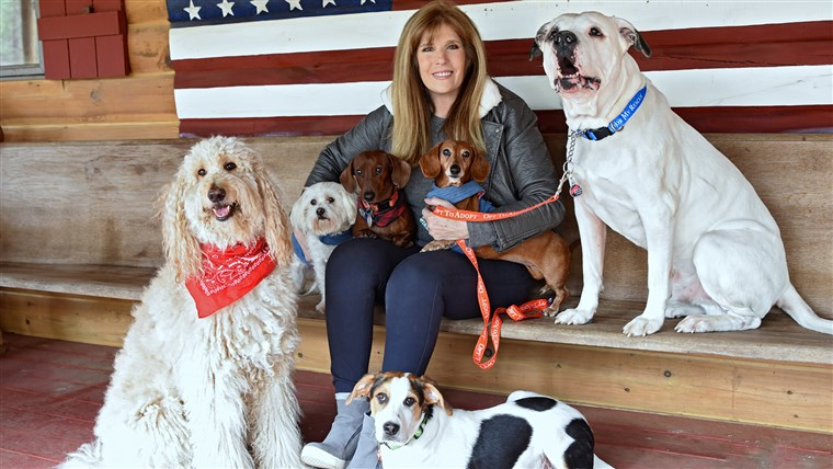 जील Rappaport with her six rescued dogs