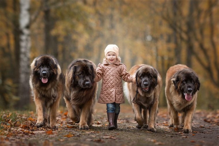 קטן Kids and Their Big Dogs