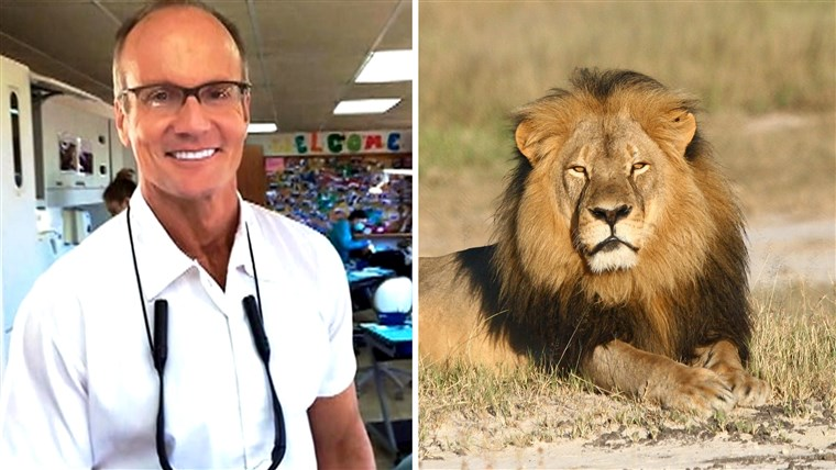वाल्टर Palmer and Cecil the Lion