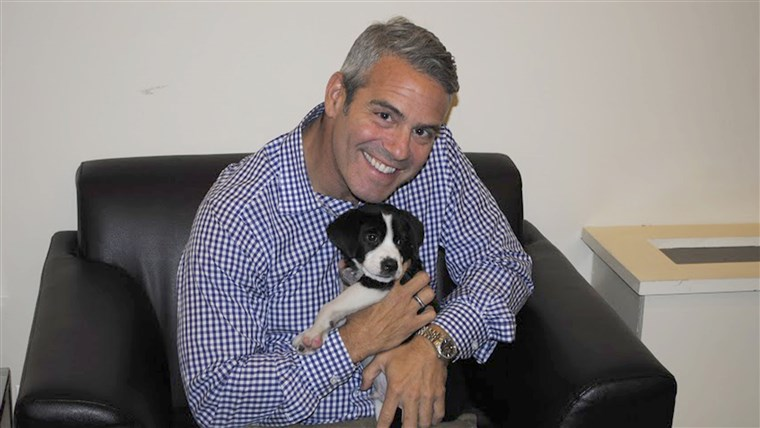 Andy Cohen with shelter dog Brody