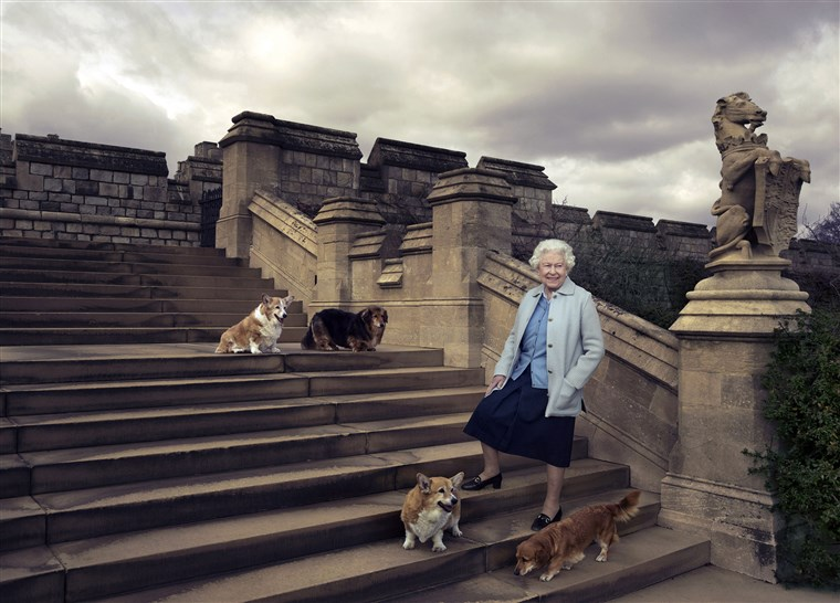 रानी Elizabeth and her dogs