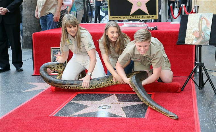 Kép: Steve Irwin Honored Posthumously With Star On The Hollywood Walk Of Fame