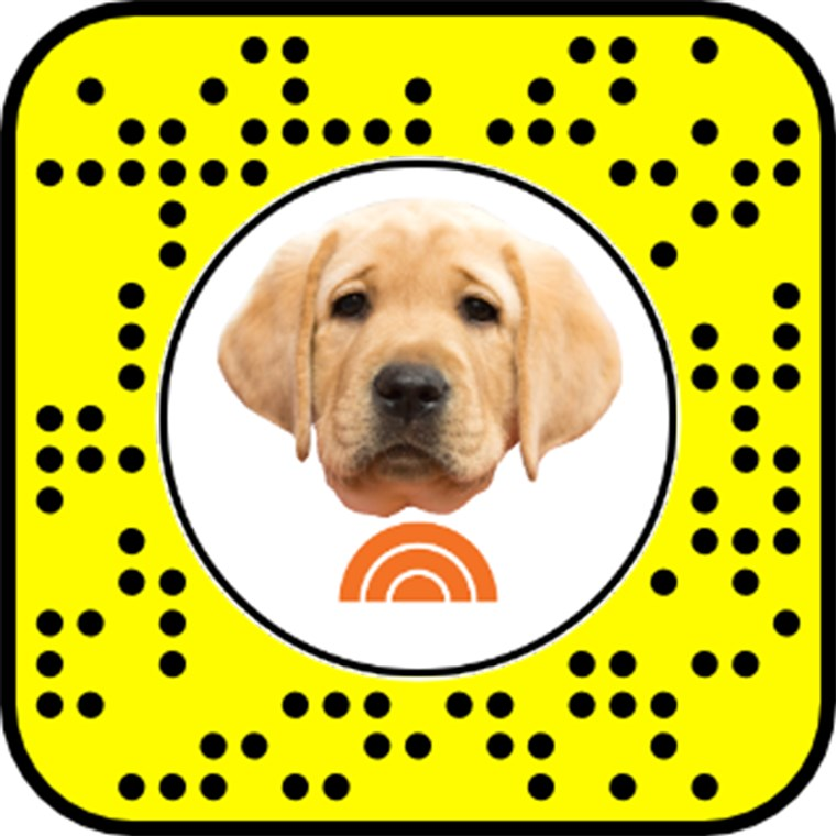 अनलॉक the TODAY Puppy Snapchat Lens